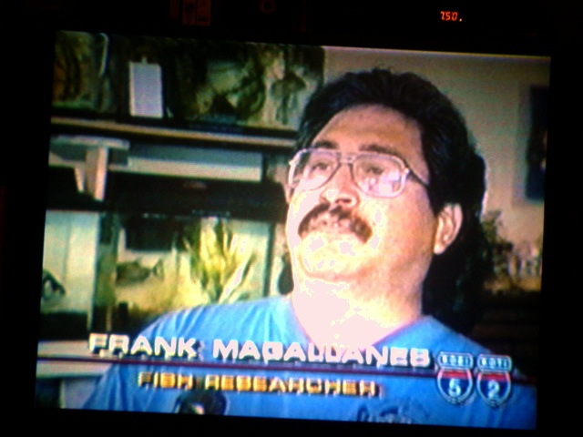 Frank-Magallanes-5